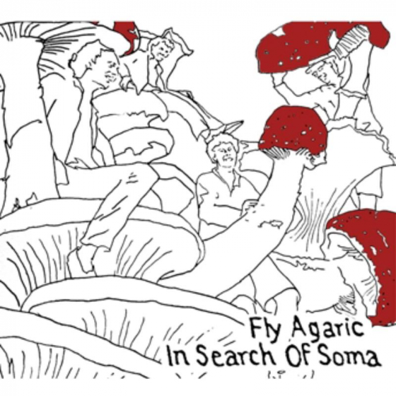 In Search Of Soma