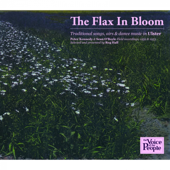 The Flax In Bloom