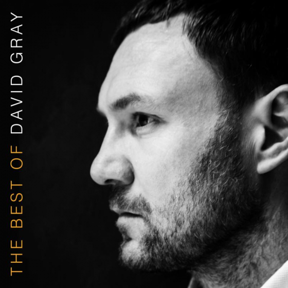 The Best Of David Gray