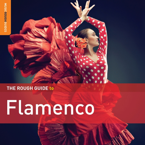 The Rough Guide to Flamenco (3rd Edition)