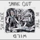 Shine Out In The Wild Silence: A Tribute To David Berman